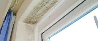 Плесень и грибок на окнах