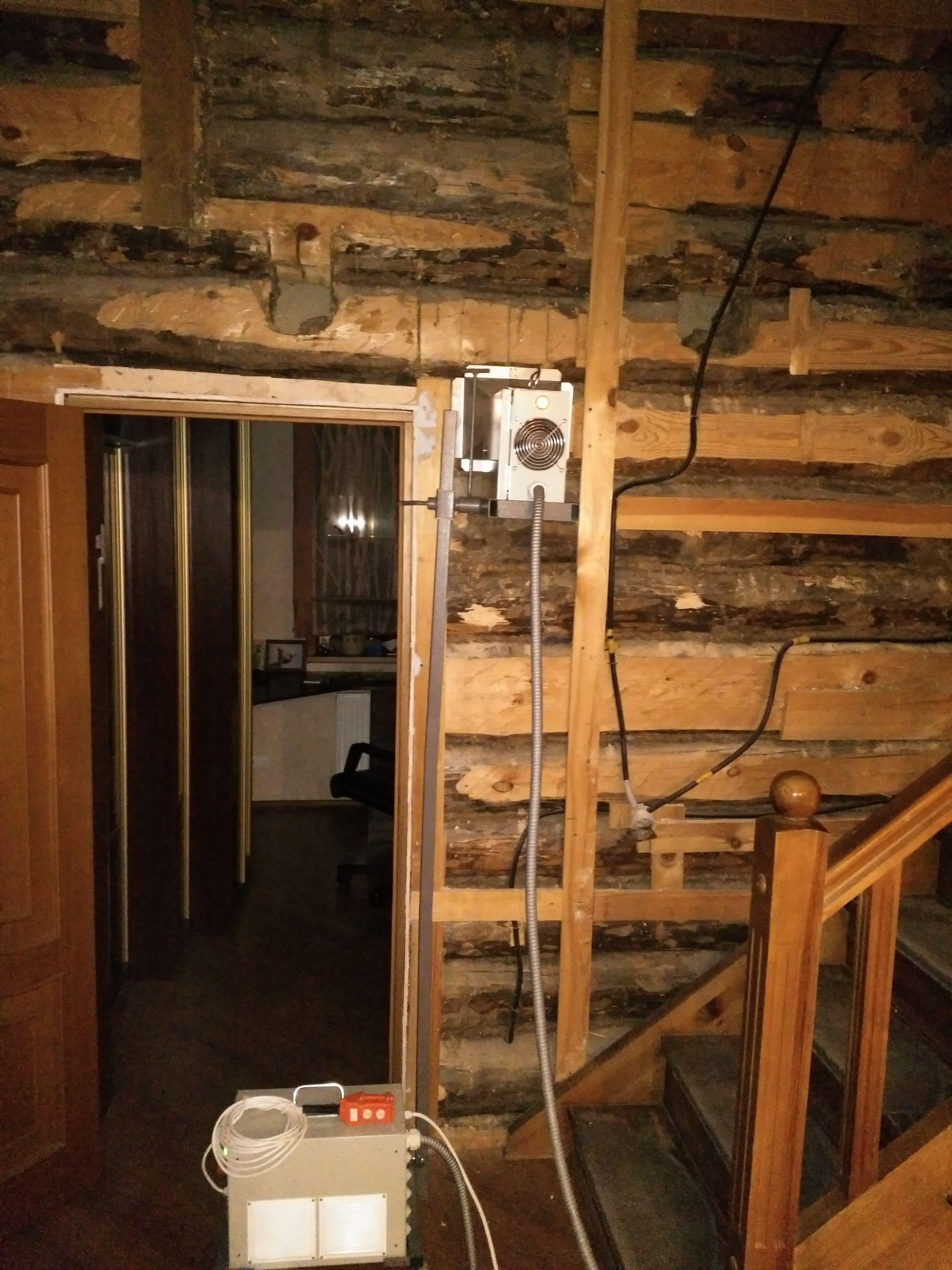 Жук усач как избавиться в деревянном доме